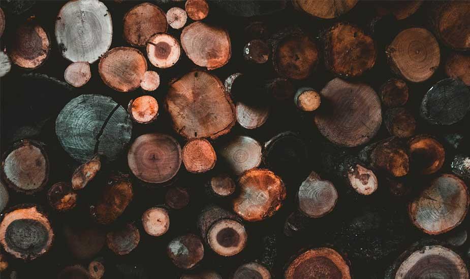 poele à bois